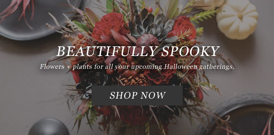 Halloween flowers and plants for halloween parties