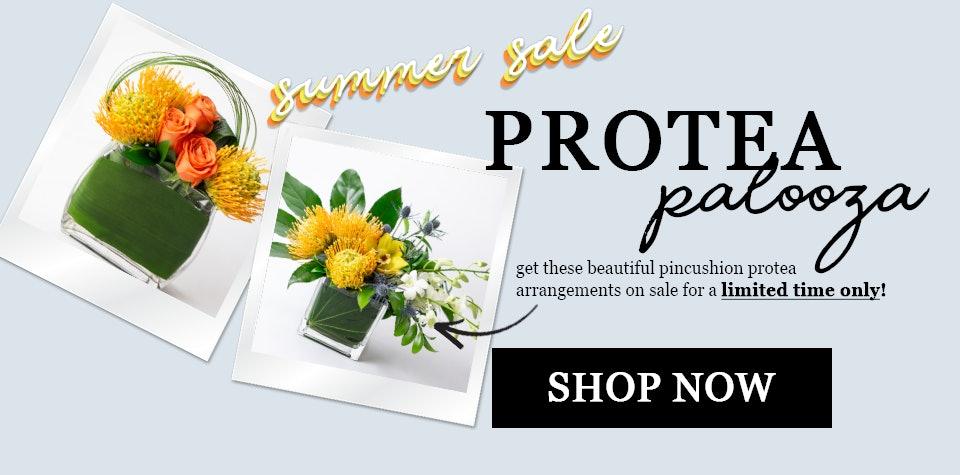 Proteas on sale