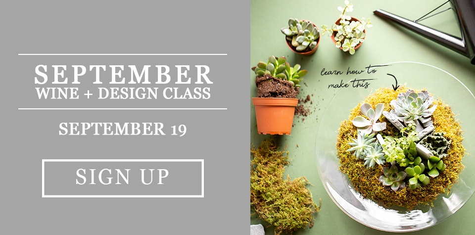 Learn how to make a succulent garden