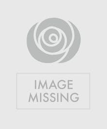 Joyful Memory Symapthy Floral Design Orlando (FL) Florist