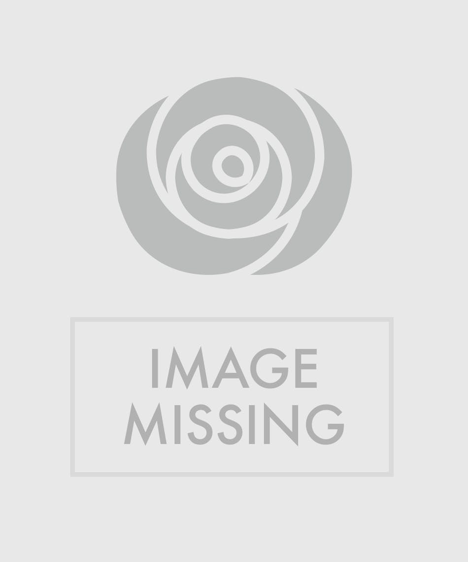 A Lovely Combination Of Garden Roses Ranunculus Pink Spruce Waxflower And Assorted