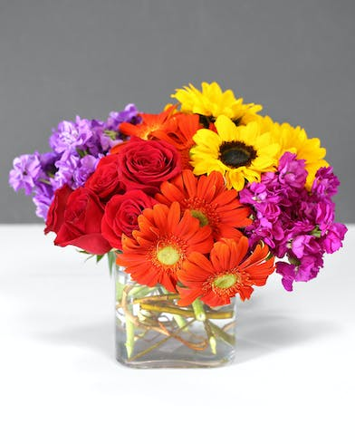 Cube vase with curly willow and add orange gerbera daisies, yellow button poms, red roses, orange asiatic lilies, purple aster, fuchsia spray stock and seeded eucalyptus