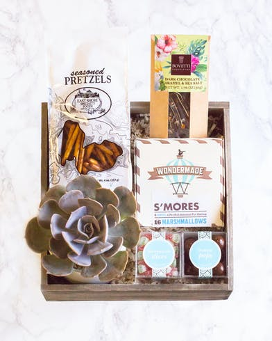 Succulent Gift Box Orlando, FL | Same-Day Delivery | In Bloom Florist