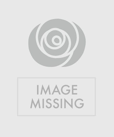 Artfully arrange brightly colored roses, Fuji, ranunculus, stock, solidago, and assorted greens.