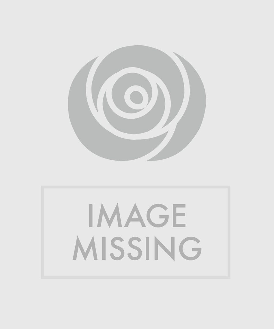Fiesta cake birthday bouquet orlando fl in bloom florist artfully arrange brightly colored roses fuji ranunculus stock solidago and assorted izmirmasajfo