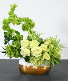 Our fresh sprung arrangement of green roses, bells of Ireland, mini green hydrangeas, and air plants