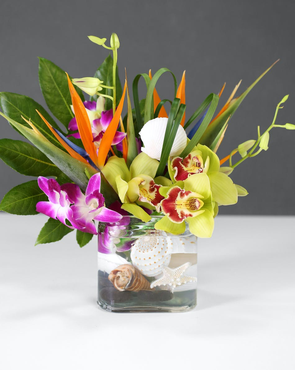 Havana Nights Tropicals Florist Orlando Fl In Bloom Florist