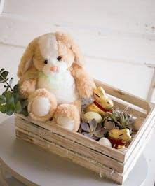 Hop Into Easter Basket