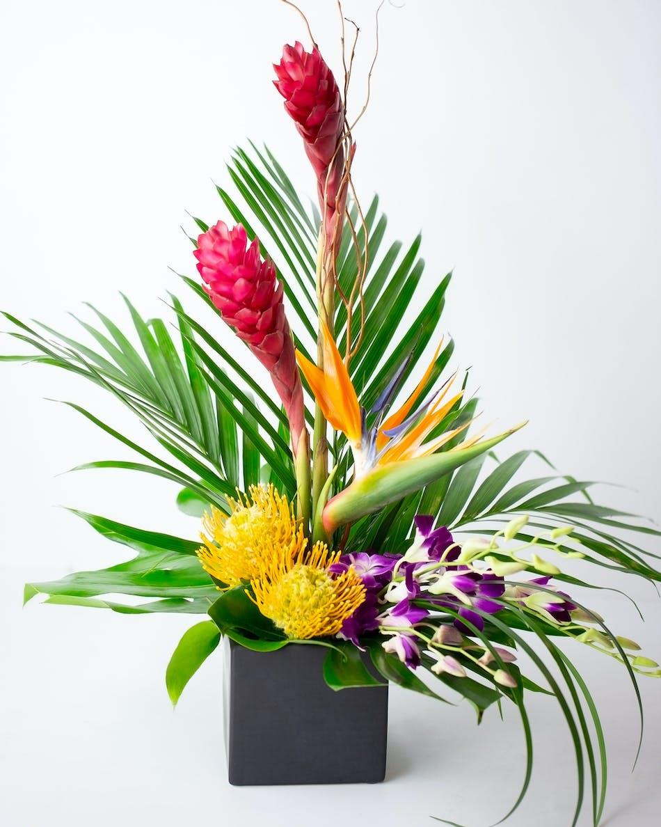 Tropical Flower Arrangement In Bloom Florist Orlando Fl Same