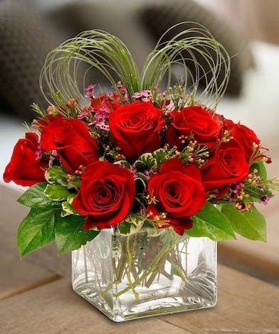 One Dozen Roses 6