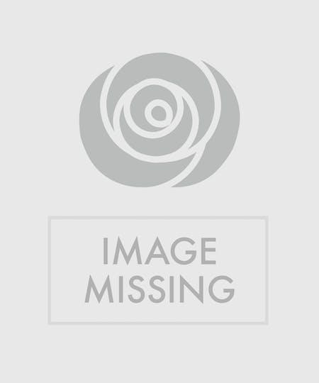Disney World Flower Delivery - Same-day Delivery - In Bloom Florist