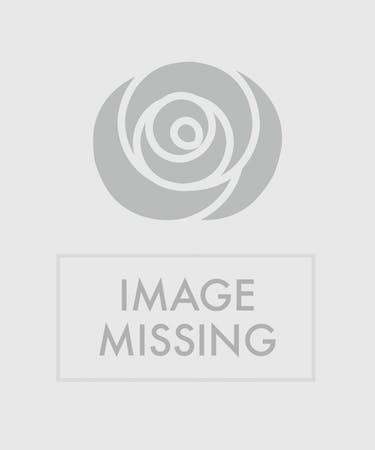 Fiesta Cake Birthday Bouquet Orlando FL In Bloom Florist